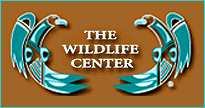 Wildlife rescue and rehabilitation in New Mexico